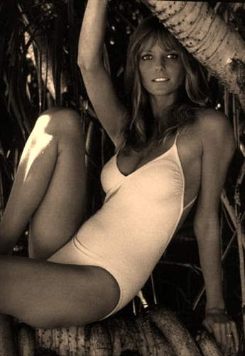 Fashion Icon  of the 70s - Cheryl Tiegs